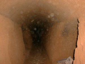 Isi gua zeni